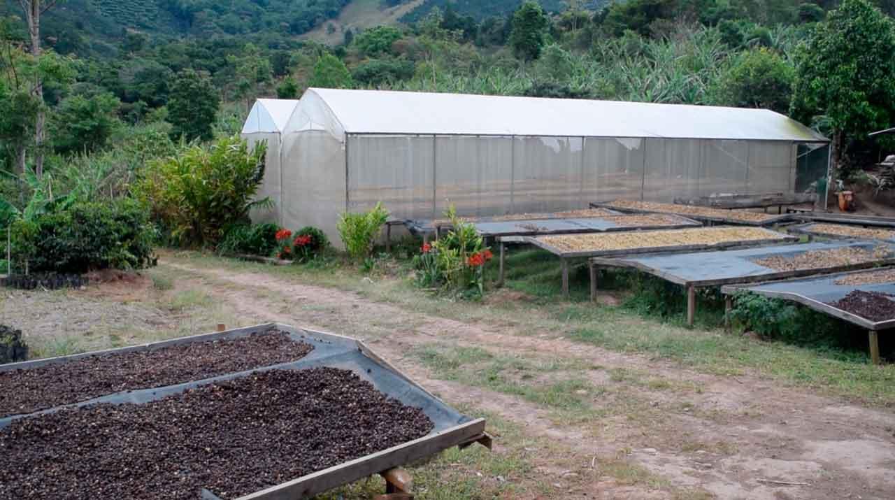 Este programa ha beneficiado a más de 150 pymes costarricenses que buscan formas innovadoras de mejorar la sostenibilidad en su producción.