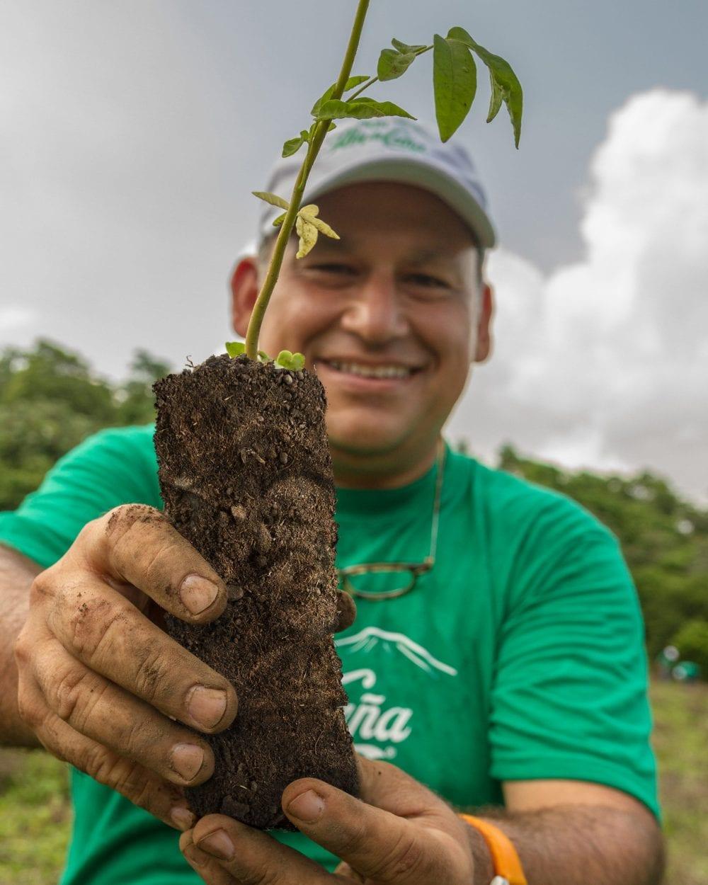 Flor de Caña anunció su alianza con One Tree Planted hoy en el marco de las celebraciones del Día de la Tierra.